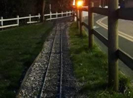 LTMR Signalling